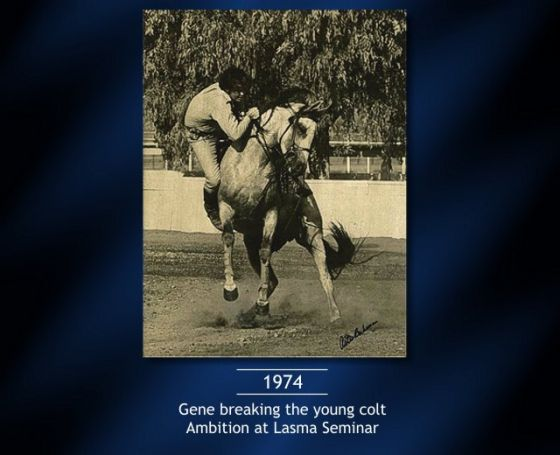 04-Gene-breaking-the-young-colt-Ambition-at-Lasma-Seminar.jpg